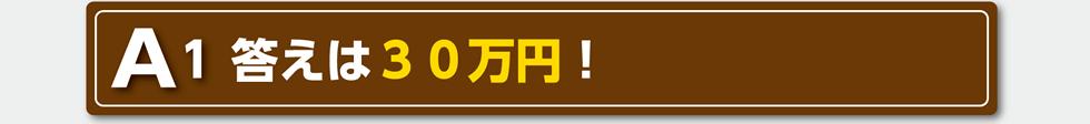 A1 答えは30万円!