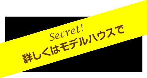 Secret!詳しくはモデルハウスで